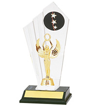 """10 1/2"""" Acrylic Riser Star Trophy"""