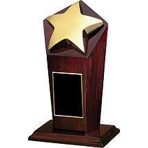 "5 x 6 - 5 x 9"" Star Award"