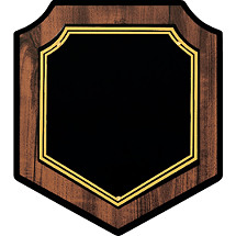 "7 x 8"" Modern Shield-Shaped Plaque"