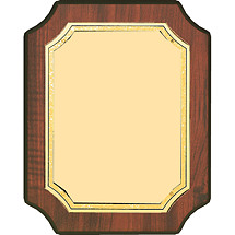 "7 x 9 - 8 x 10"" Gold Brass Plaque w/ Half Moon Corners"