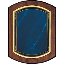 "Topaz Blue 7 x 9 - 8 x 10"" Double-Dome Plaque"
