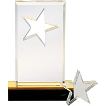 "DINN DEAL! 6 1/2"" SuperStar Acrylic Award"