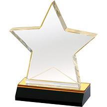 "5 x 5 3/4"" Designer Acrylic Star Award"