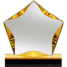 "6 x 6"" Lucite Star Award"