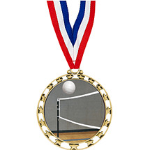 "2 1/2"" Sports Star Series Medal - Volleyball - with 30"" Neck Ribbon"