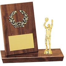 """6 1/2"""" Desktop Trophy"""