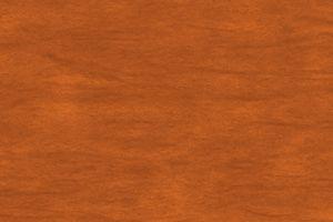 Redwood Toner - SW 3553