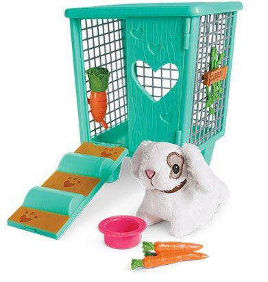 Carrot & Hutch