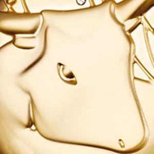Juniors Fragrance: Taurus Estée Lauder Aries Compact