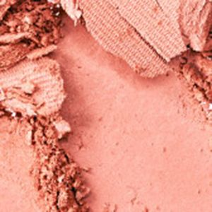 Powder Blush: Spellbinder MAC Powder Blush