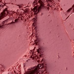 Powder Bronzer: Subborn MAC Pro Longwear Blush