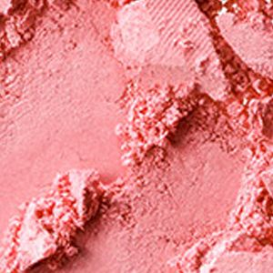 Blush: Fleeting    Romance MAC Pro Longwear Blush