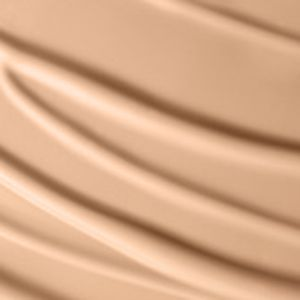 MAC: Nw20  Fn MAC Pro Longwear Foundation