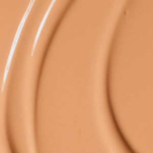 Concealer: Nw 25 MAC Pro Longwear Nourishing Waterproof Foundation