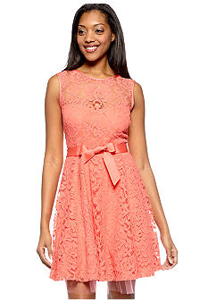 Betsy & Adam Sleeveless All-Oover Lace Dress