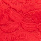 Formal Dresses for Women: Red Betsy & Adam Allover Lace Gown with Open Back