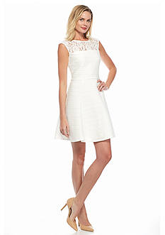 Taylor Illusion Lace Neckline Dress