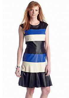 muse Color-block Fit and Flare Dress