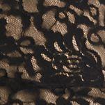 Women: Xscape Dresses: Black/Nude Xscape Off the Shoulder Lace Cocktail Dress