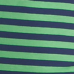 Women's T-shirts: Navy / Green New Directions Weekend Stripe Scoop Neck Tee