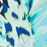 Petite Dresses: Jade Utopia Kim Rogers Petite Sleeveless V-Neck Godet Dress