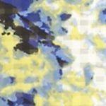 Petite Blouses: Yellow Kim Rogers Petite Printed Button Down Tank