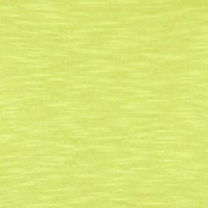Kim Rogers Women Sale: Yummy Green Kim Rogers Solid 2fer Top
