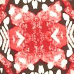 Kim Rogers Women Sale: Red/Khaki Kim Rogers Long Sleeve Crew Neck Knit Top