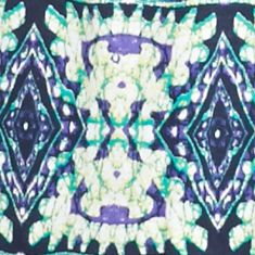 Women's Plus: Kim Rogers Tops: Purple/Yummy Green Kim Rogers Plus Size Tribal Print Embroidered Tank
