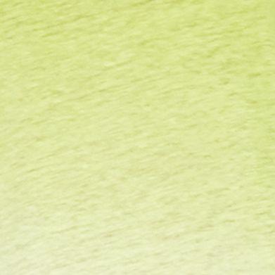 Linen Shirts: Hampton Lime/White Lauren Ralph Lauren Ombre Linen Scoopneck Tee