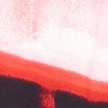 Women: Calvin Klein Tops: Watermelon Print Calvin Klein Print Roll Tab Sleeve Top