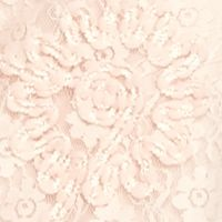 Knit Tops for Women: Blush Ruby Rd Blush Crush Embroidered Floral Lace Butterfly Top