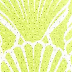Casual Dresses: Lime/White crown & ivy™ Printed Eyelet Dress