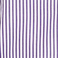 Polo Ralph Lauren Women Sale: Purple/White Polo Ralph Lauren ELLEN BENGAL STRP LS SHRT