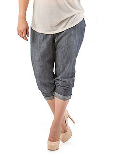 Standards and Practices Plus Size Louise Zip Front Tencel Denim
