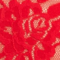 Thongs for Women: Red Hanky Panky® Plus Size Signature Lace Boyshort - 481281X