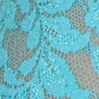 Plus Size Lingerie: Sexy Lingerie: Calypso Blue Hanky Panky Plus Size Retro V-kini - 9K2124X