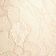 Average Figure Bra: Nude DKNY Lace Super Sleek Plunge Push Up - 458267