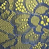 Average Figure Bra: Navy / Lime DKNY Lace Super Sleek Plunge Push Up - 458267