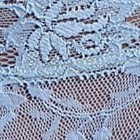Luxury Lingerie: Periwinkle DKNY Signature Lace Boyshort - 545000