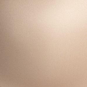 Plus Size Lingerie: Full Figure: Nude Chantelle™ Essential Strapless - 3812
