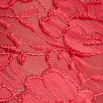 Women's Hipster Panties: Coral Cast ND Intimates Lace Unlined Hipster - H191236