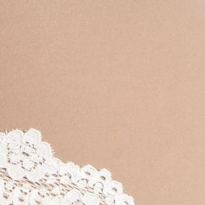Luxury Lingerie: Sun Tan Honeydew Intimates Emily Sheer Microfiber Hipster - 200497