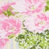 Honeydew Intimates Women Sale: Cactus Stripe Honeydew Intimates Riki Cotton Girl Short - 590331