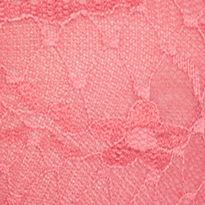 Average Figure Bra: Rose Free People Essential Lace Bandeau - F511O406A