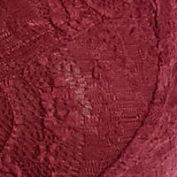 Bras, Panties & Lingerie: Hard To Find Sizes: Burgandy Free People Stretch Lace Bra - F715F151