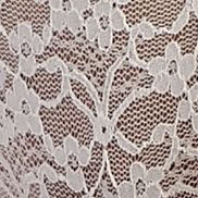 Luxury Lingerie: Ivory Free People Dreams Come True Lace Thong - F731W811