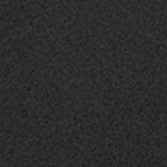 Women's Bikini Underwear: Black SPANX Lace Bikini - FP2415