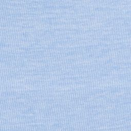 Boxer Briefs for Women: Heathered Powder Blue SPANX Everyday Shaping Panties Brief - SS0715