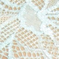 Full Figure Bras: Aqua Sky Perfects Australia Delightfuls Pretty Lace Soft Cup Bra - 14USC051